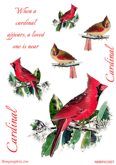 Ninny's When a Cardinal Appears Paper for Decoupage