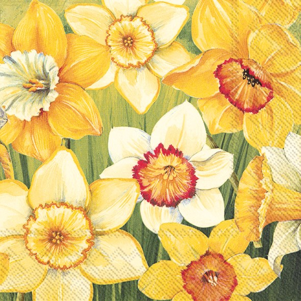 Daffodils Field Napkins for Decoupage