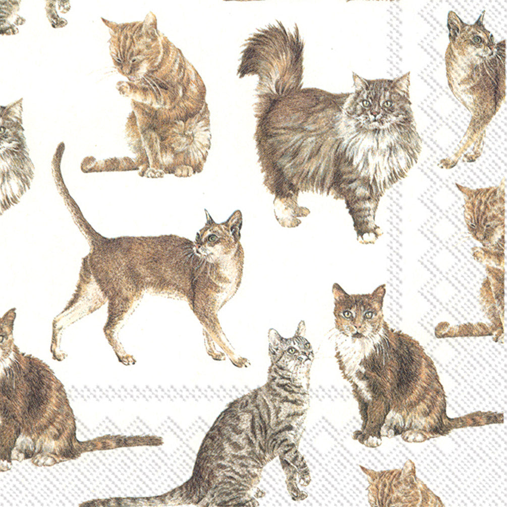 My Favorite Cat Napkins for Decoupage