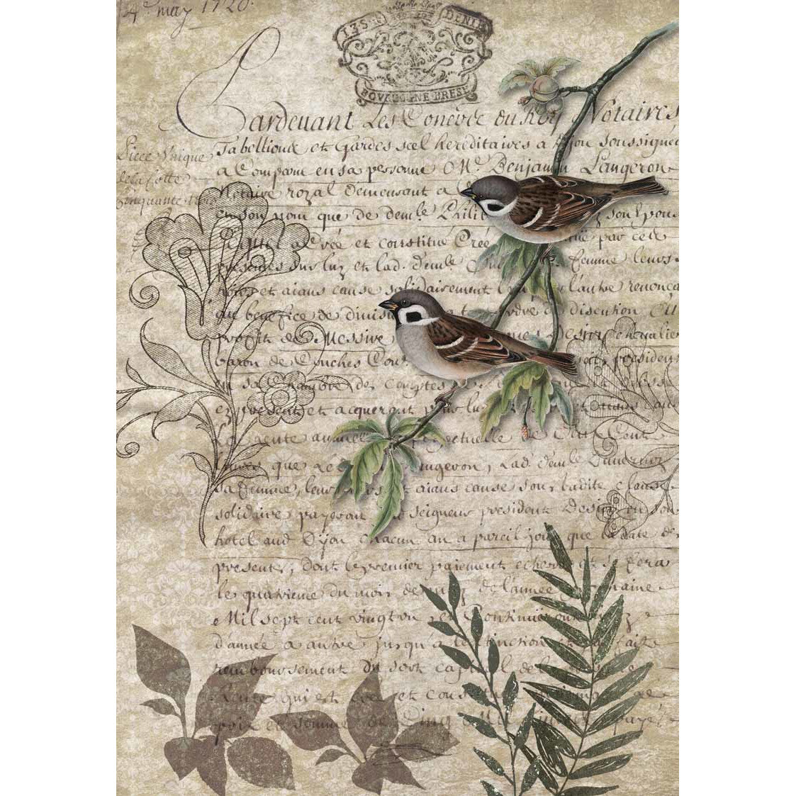 Decoupage Queen Birds on a Branch Rice Paper A4 0089