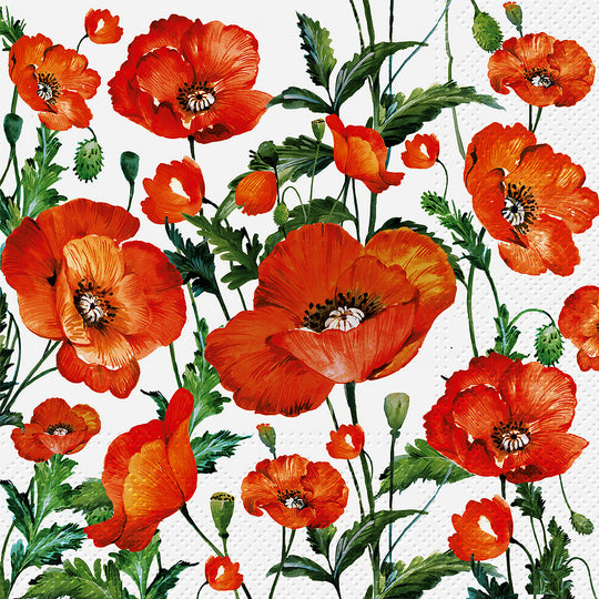 Flanders Poppy Napkins for Decoupage
