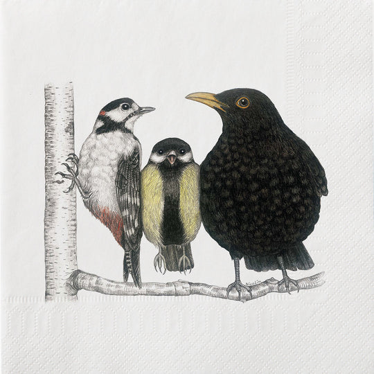 Bird Conversation Napkins