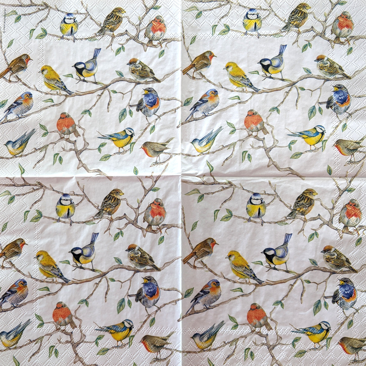 Birds Meeting Lunch Napkins
