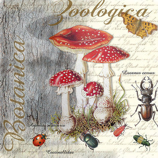 napkins for decoupage fly agarics and beetle