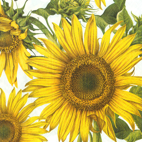 napkins for decoupage jumbo sunflower