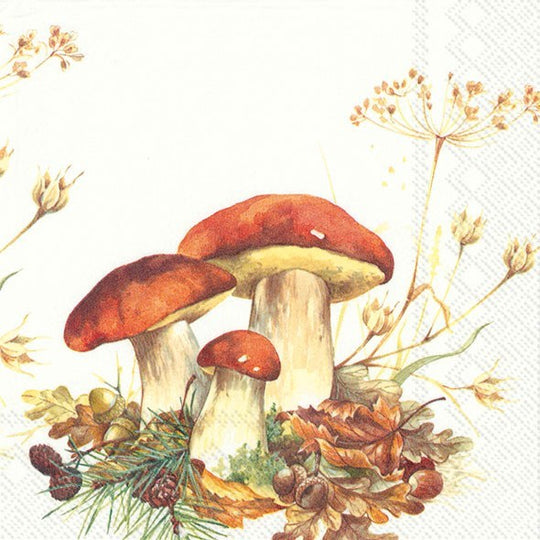 ninnys napkins for decoupage boletus edulis