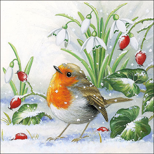 ninnys napkins for decoupage robin