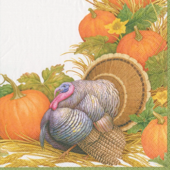 thanksgiving harvest decoupage napkins