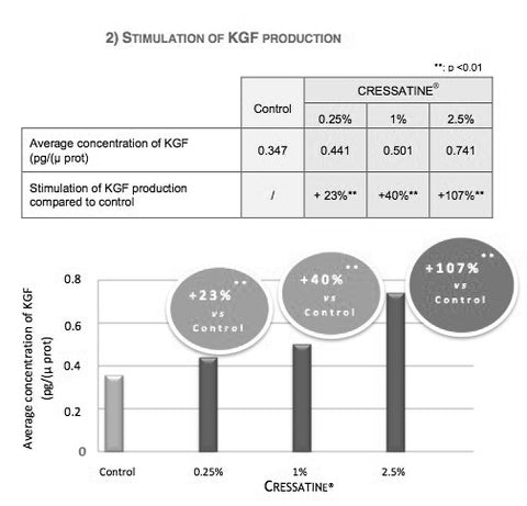 CRESSATINE in RevivScalp boosts KGF causes a well-structured hair to be produced, lengthens anagen phase