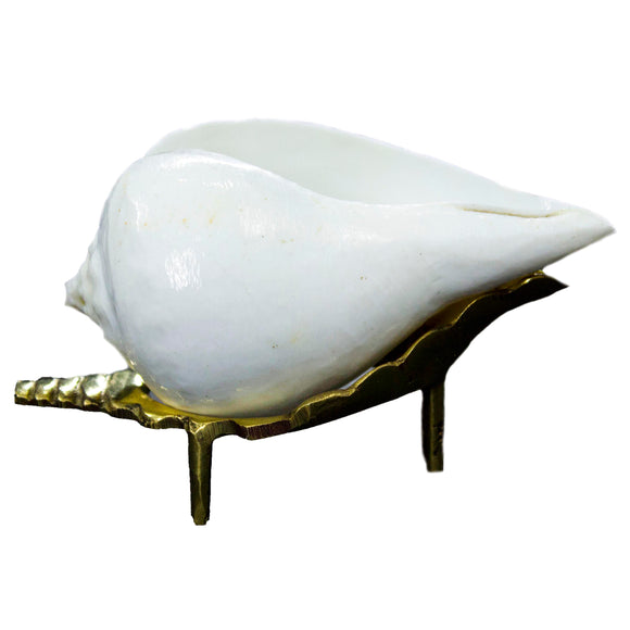 Aragya Shankh with Brass Shankh Stand | Conch for offering ( 9 cm)