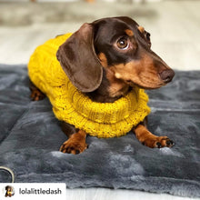 Load image into Gallery viewer, Dachshund on Luxury Soft Waterproof Dog Travel Bed/Bag