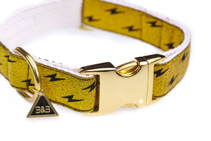 Metallic Gold Quick Release Dog Collar