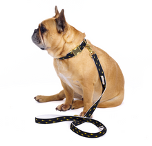 Load image into Gallery viewer, French Bulldog wearing Metallic Luxury Dog Lead