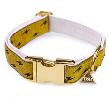 Load image into Gallery viewer, Metallic Gold Quick Release Dog Collar