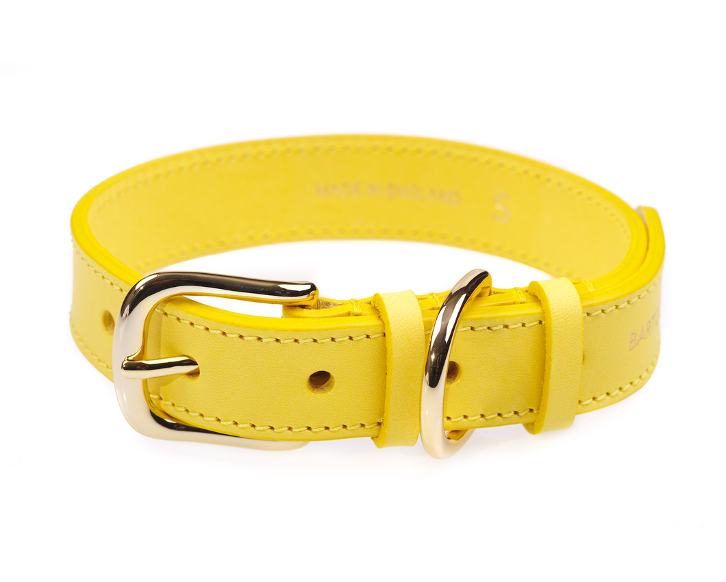 Luxury Yellow Leather Dog Collar
