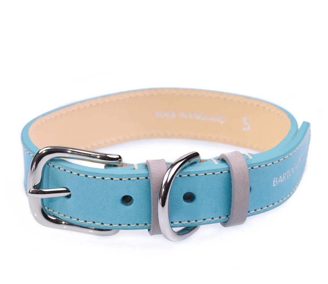 Luxury Blue Dog Collar