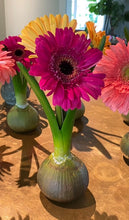 Load image into Gallery viewer, Flower bulb vase