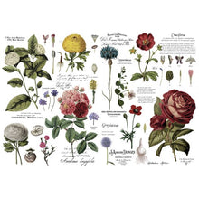 Load image into Gallery viewer, Vintage Botanical - ReDesign with Prima Decor Transfer®