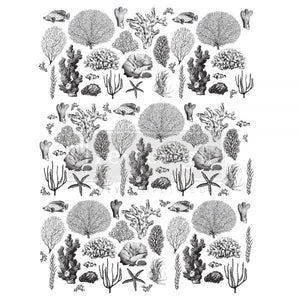 Coastal Sea Life - ReDesign with Prima Decor Transfer®
