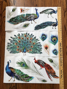 Peacock Dreams - ReDesign with Prima Decor Transfer®
