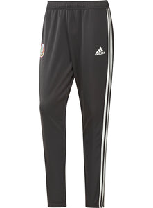 ADIDAS MEXICO TRAINING PANTS