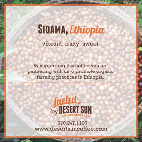Ethiopia Sidama // Light Roast