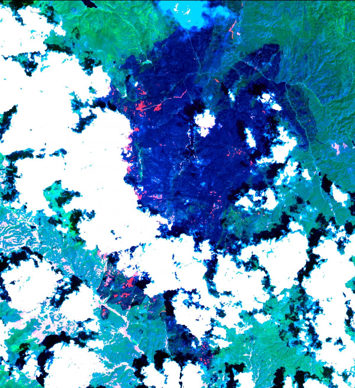 NASA ASTER image hayman forest fire colorado
