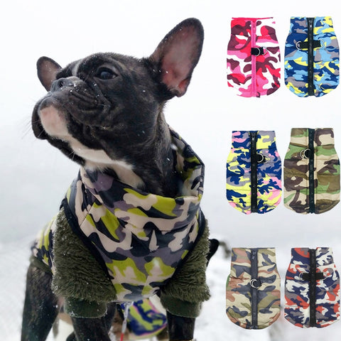 Waterproof Clothing for Pet