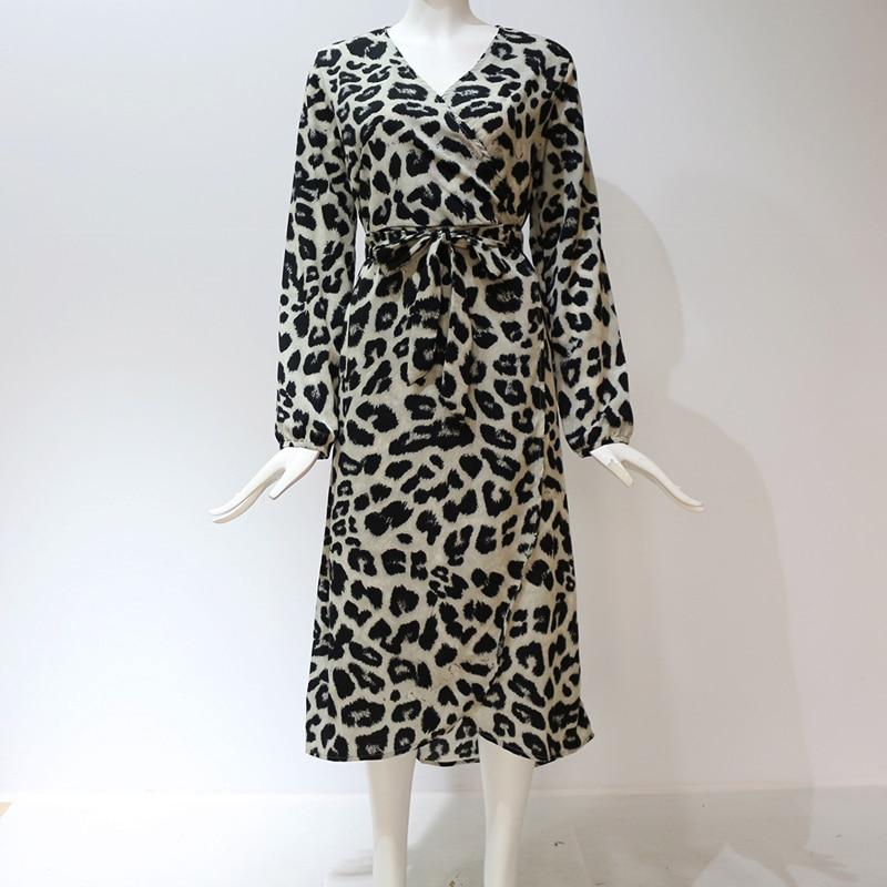 Loose Long Sleeve Deep V-neck A-line Leopard Dress