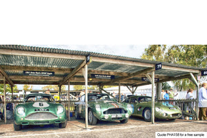 Aston Martin Art In The Pits Greetings Card