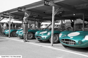 DBR1 Aston Art For Sale