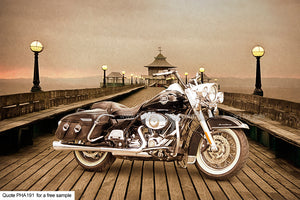 Harley Roadking Art For Sale