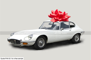 Motoring Gifts Jaguar E-Type Greetings Card