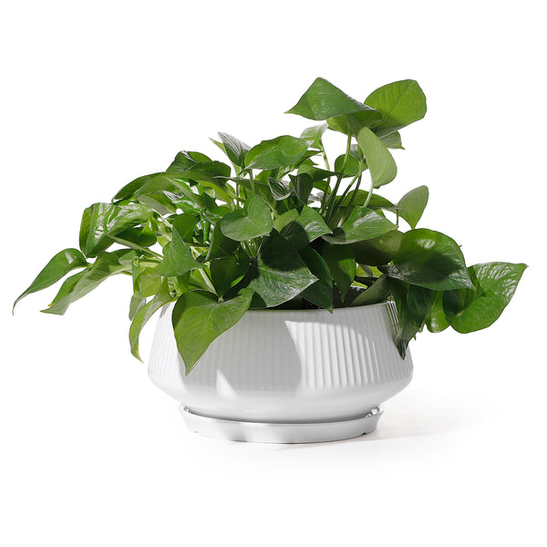 8.8 Inch Large Ceramic Plant Pot with Saucer