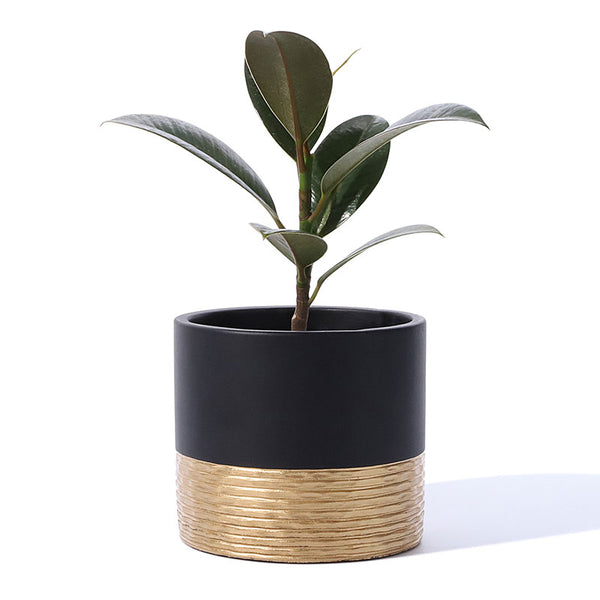 Hammered Style Black Cement planter