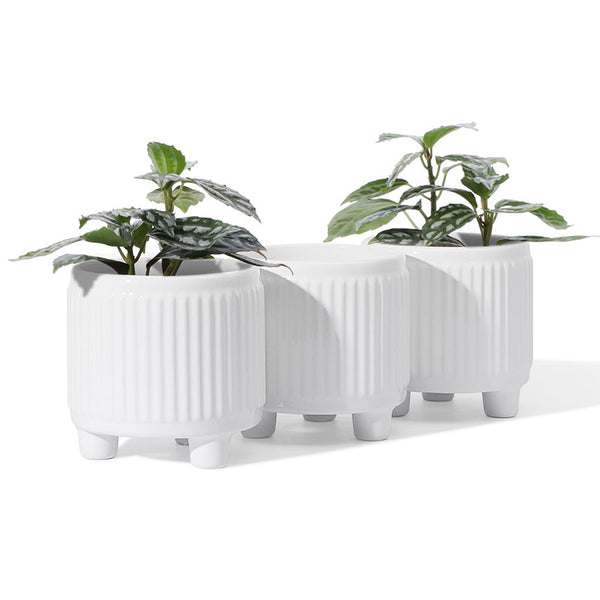 White Ceramic Succulent Planters with 3 Legs