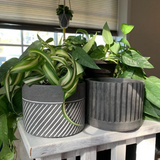 Grey Cement Planter with Drainage Hole, Set of 2