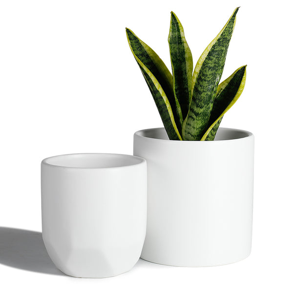 White Cylinder and Octagon Ceramic Planters