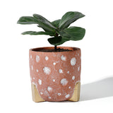 5.5 Inch Cement Concrete Planter
