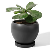 5.6 Inch Porcelain Planter with Saucer, Matte Black