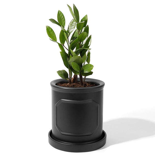 6 Inch Cylinder Porcelain Planter with Saucer, Matte Black