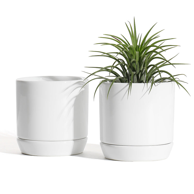3 inch White Cylinder Ceramic Plant Pots