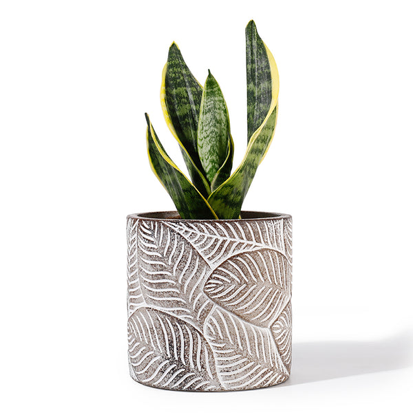 Vintage Leaf Concrete Flower Pot