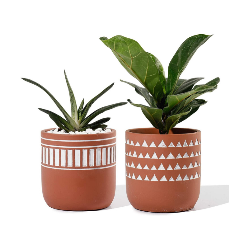 Decorative Cement Planters
