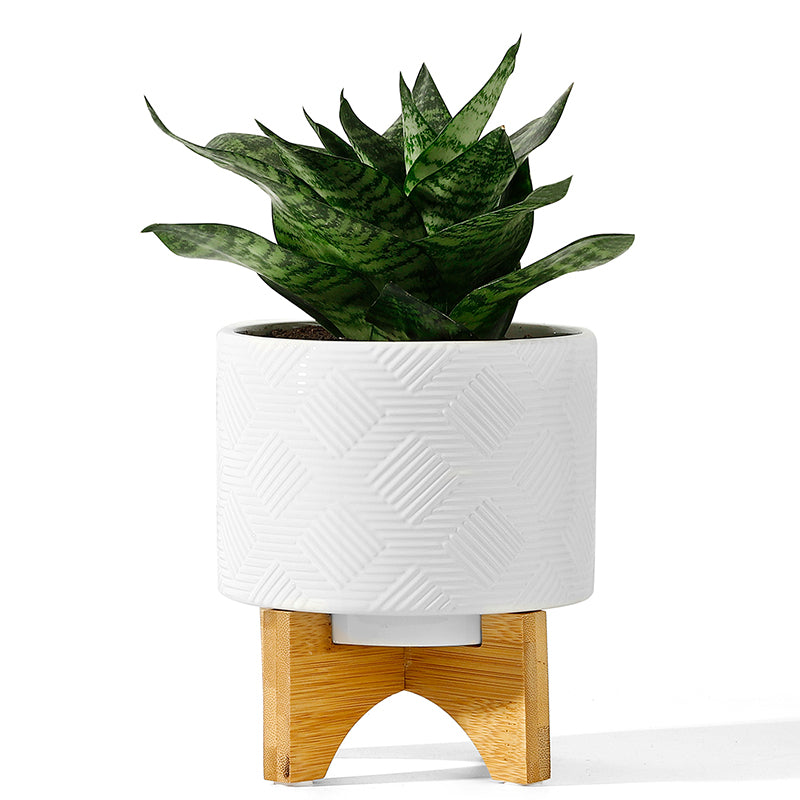 White Ceramic Pot With Foldable Wood Stand