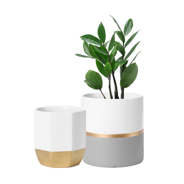 Cylinder and Octagon Ceramic Planter