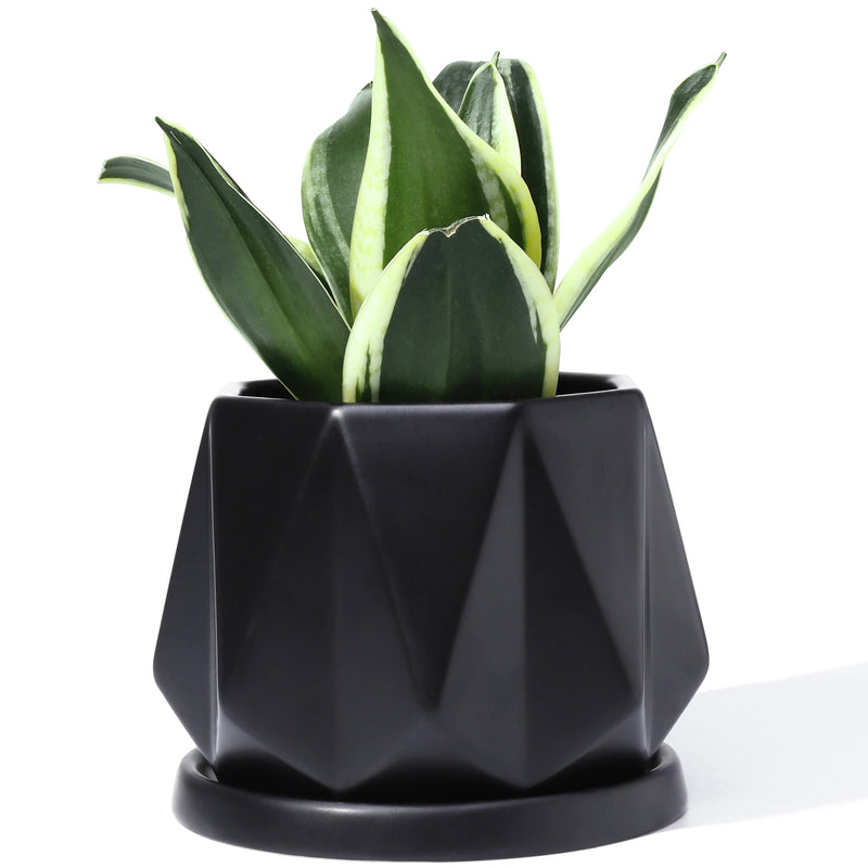 Modern Black Ceramic Planter