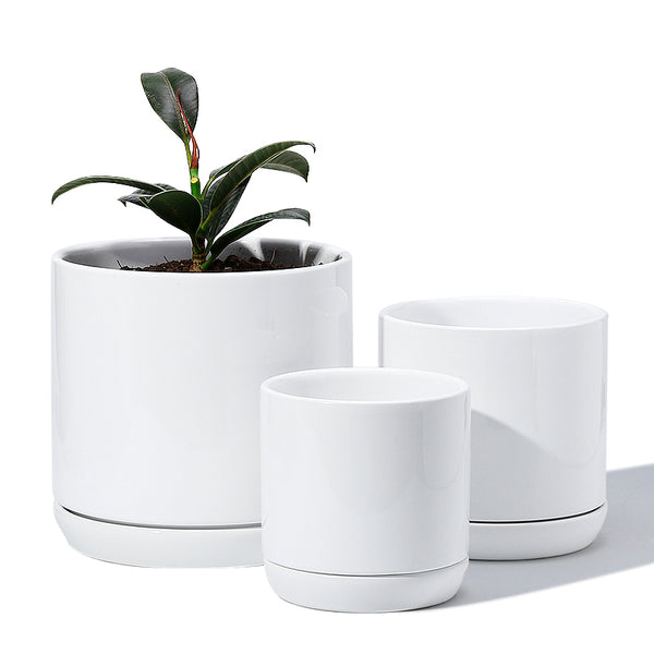 White Ceramic Cylinder Planters with Saucers, Set of 3