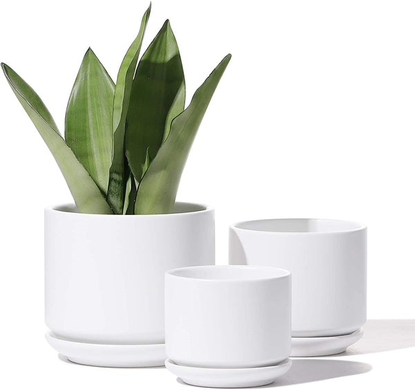 White Ceramic Cylinder Planter Set