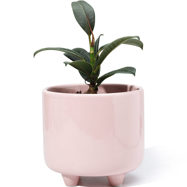 5.3 Inch Pink Glazed Ceramic Pot